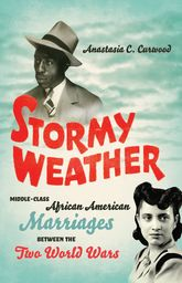 Stormy WeatherMiddle-Class African American Marriages between the Two World Wars$